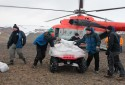 Arctic Cats from the Czech Republic help scientists in Antarctic