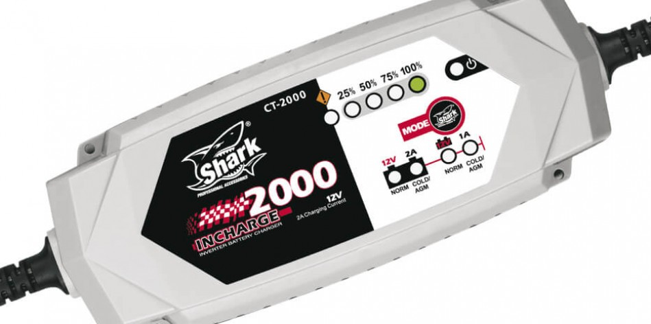Automatic smart inverter battery charger